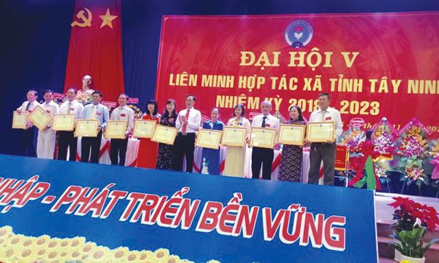 lien-minh-htx-tay-ninh-9501-1542373150.j